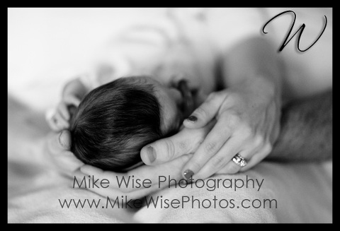 newbornwise-3.jpg